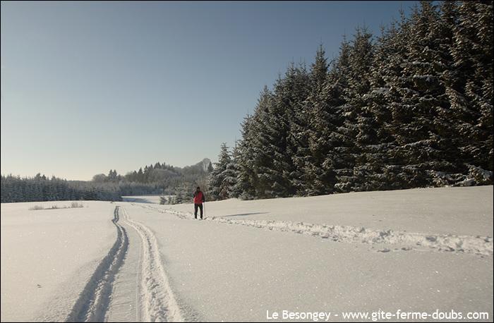 skifondarcsouscicon9
